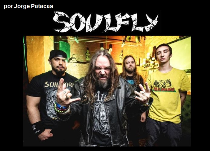 soulfly0