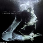 Siamese Fighting Fish - Breathe See Move