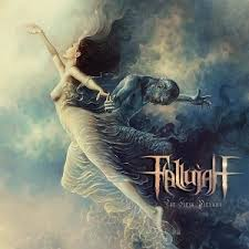 Fallujah Flesh